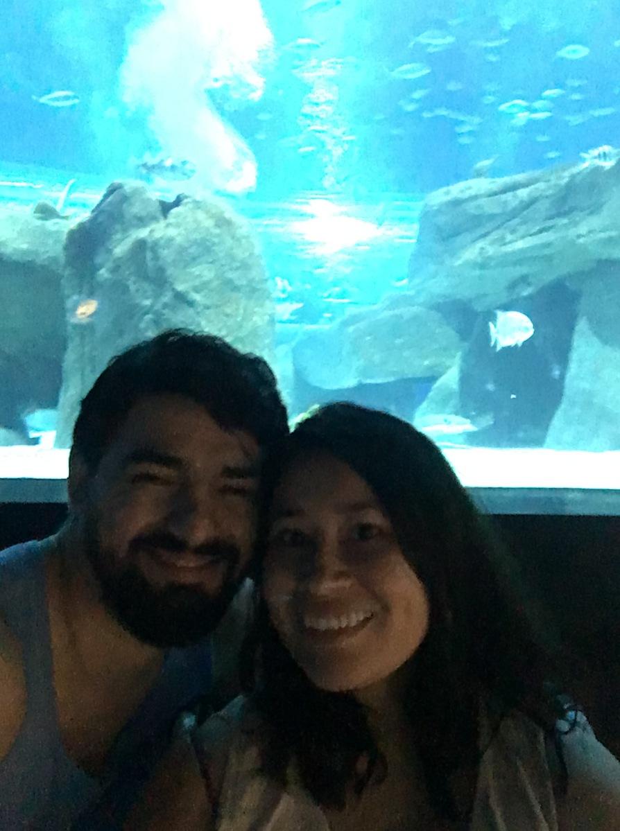 Al fondo un acuario